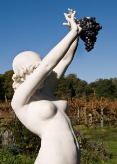 Persephone at Brightwell Vineyard