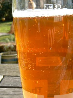 A refreshing pint of Houston Peters Well